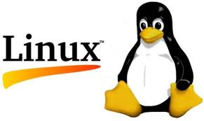 Hosting på Linux server